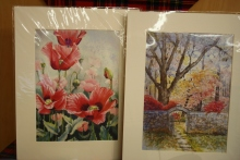 Judi's beautiful prints